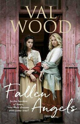 Fallen Angels by Wood, Val Book The Cheap Fast Free Post