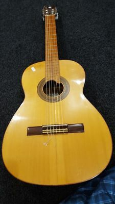Beautiful Classical Spanish Raimundo Acoustic Guitar