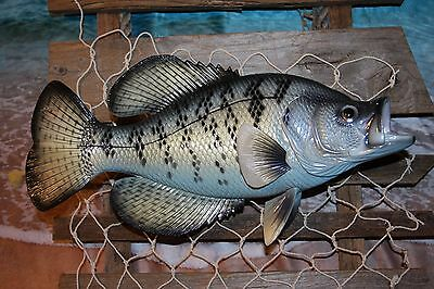 (1), Crappie Fish Replica, Sport Fishing Wall Decor, Fisherman Wall Decor,Trophy