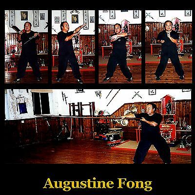 Mastering Authentic Wing Chun Kung Fu (8 DVD Set)