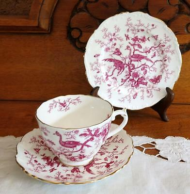 "Vintage/collectable Coalport ""cairo"" Cup, Saucer & Plate Trio Red With Peacocks"