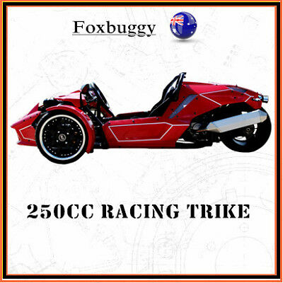 2017 250cc ROADSTER TRIKE SPORT RACING QUAD BIKE ATV 3 WHEELER SLIDER