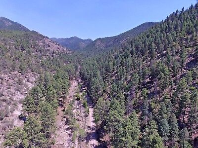 New Mexico Gold Mining Claim Lode Panning on Silver Creek NM Heavily Mineralized
