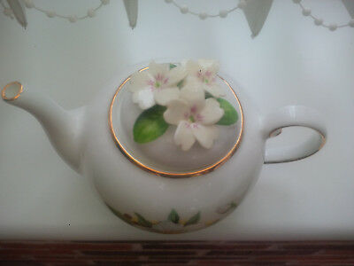 """Royale Stratford The Country Cottage Teapot Selection """"christmas Roses"""" Design"""