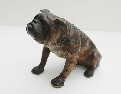 BULL DOG, VICTORIAN cold painted terracotta, c1900, very unusual