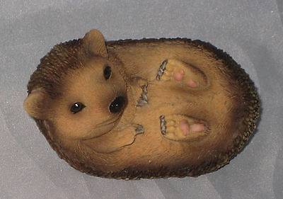 Hedgehog Figurine Baby Sitting Up Looking Right Hedgie New In Box Sculpture