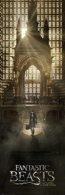 Fantastic Beasts and Where to Find Them Teaser Türposter 53 x 158 cm
