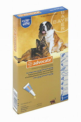 Advocate for extra-large dogs weighing between 25kg and 40kg (3x4.0ml)