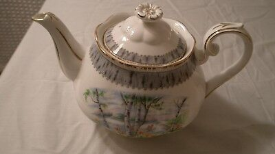 Very Nice Large Royal Albert Silver Birch Pattern Tea Pot Teapot England