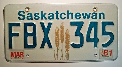"1981 Saskatchewan Passenger License Plate FBX*345  ""Wheat Sheaves Sheaf Graphic"""