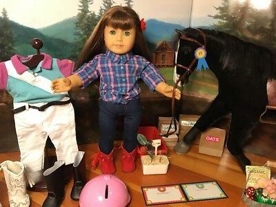 Huge American Girl Doll & Horse Lot Filled W/Adorable Items-1 Of A Kind Lot
