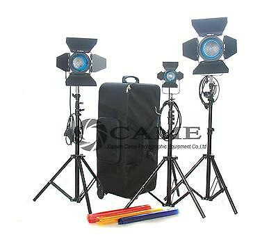650W/300W/150W Fresnel Tungsten Light Continuous Video Spot Film Light Camcorder