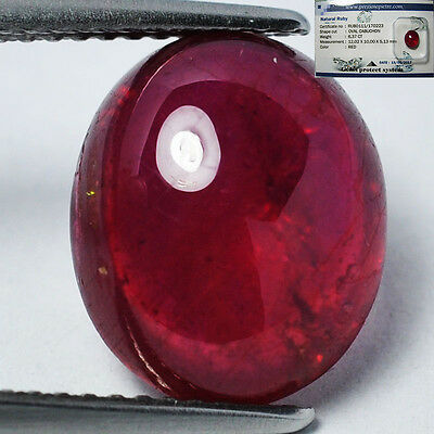 Bello Rubino Cabochon Genuino In Blister Ct. 6,37 Ovale Top Red