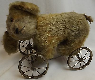 VINTAGE 1930s CHAD VALLEY MOHAIR BEAR / DOG ON WHEELS PULL-ALONG TOY
