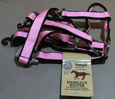 "NEW Hamilton 1"" Nylon Halter w Chin Snap for 500-800lbs Horse, Small, Coral $165"