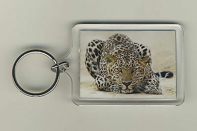 Leopard Nature Wild Animal Wildlife Acrylic Photo Keychain Key Fob