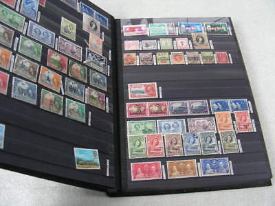 BRITISH AFRICA, GUYANA, Excellent Accumulation of Stamps in a SUPERSAFE Stockboo