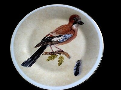 FENTON CHINA COMPANY  Jay Bird 10 3/4 inch Collectors / Display / Cabinet Plate