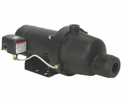 Dayton 4Hey4 1/2 Hp Thermoplastic Shallow Well Jet Pump, 10/4.8 Amps, New!
