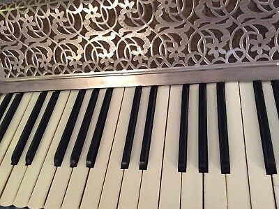 A Beautiful Vintage Piano Accordian By Riosa