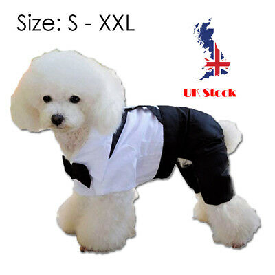 Extra Large Small Dog Puppy Formal Suit Dress Clothes White Big Wedding