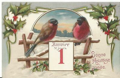 New Year  - Colourful Bullfinch Birds Sitting On A Fence, Snow Holly Vintage Pc
