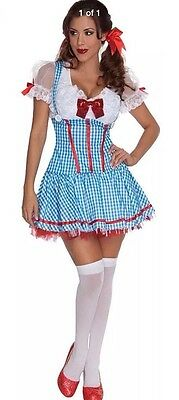 The Wizard Of Oz Dorothy Ruby Red Adult Secret Wishes Xsm,Small,Med.LG NEW!