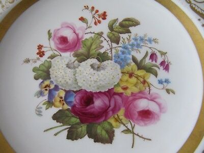 Very Fine Spode Copelands China Cabinet Plate T.Goode & Co