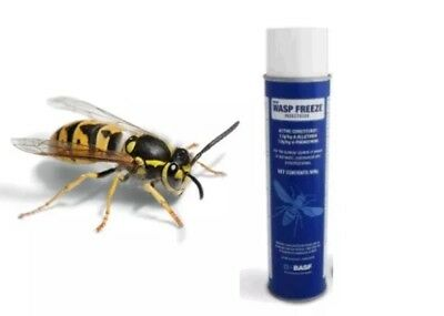 WASP FREEZE Aerosol Spray Insecticide 500g Rapid Nest Killer Works in 5 Seconds