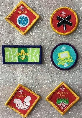 6 Assorted New Scout Badges
