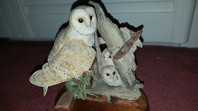 Border Fine Arts Barn Owl and Hiding Chicks