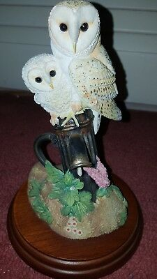 Border Fine Arts 650587 Barn Owl and Chick