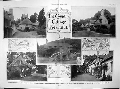 Print Thatched Cottages Luccombe Sidmouth Selworthy Allerford 1906 611Q020