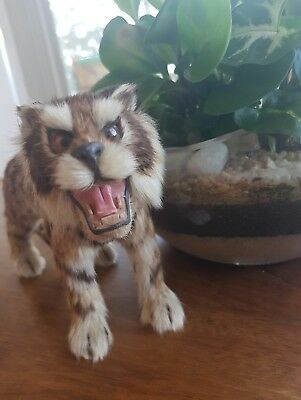 Real fur Antique Tiger In excellent condition Handmade