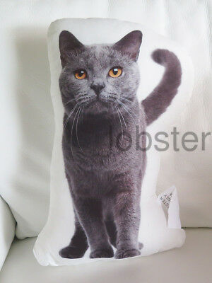 BEAUTIFUL KITTY CAT PILLOW Gray Fur Photograph on fabric 14 inch zipper cover