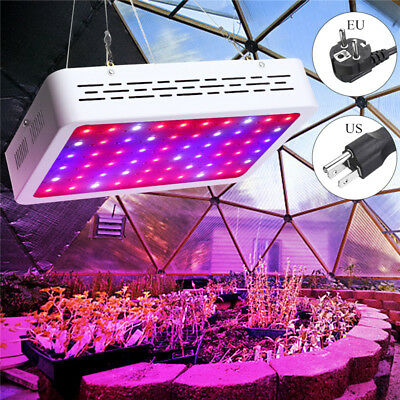 300W LED Grow Light Hydro Full Spectrum Hydroponic Indoor Veg Bloom Plant Lamp