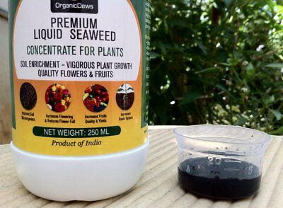 Organic Liquid Fertilizer nutrition Seaweed Extract Concentrate For Plants 250ml
