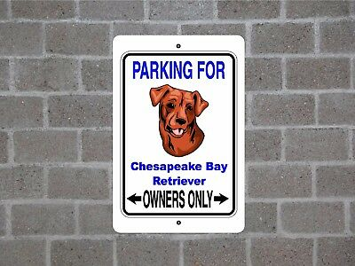 Chesapeake Bay Retriever dog parking owners guard yard fence metal aluminum sign
