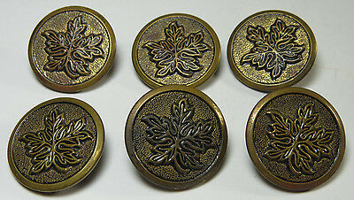Lot of 6 Matching Antique / Vintage Metal Buttons with Maple Leaf Design, 1 1/8""