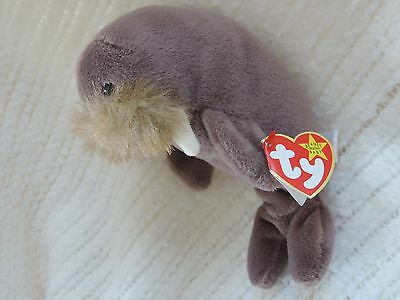 New Ty Beanie Babies Jolly the Walrus Retired