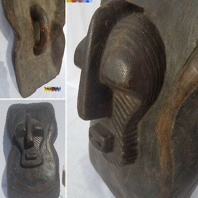 PREMIUM tribal fine African Art Songye Kifwebe Shield Figure Sculpture Statue