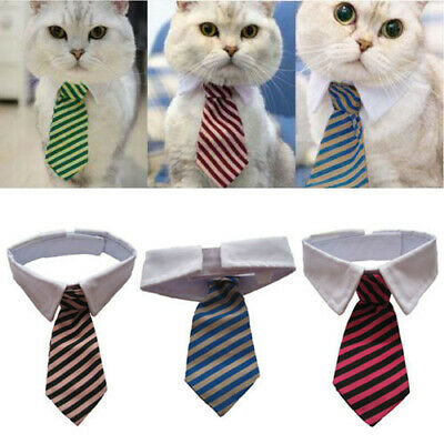 Lovely Striped Bow Tie Collar Neck Tie White Collar 3 Colors For Pet Dog Cat New