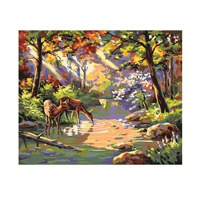 AU DIY 40*50cm Deer Paint By Number Kit Painting Canvas Home Decor Wall Art New