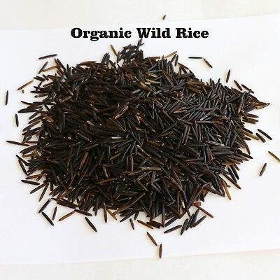 Grown Organic Long Grain Wild Rice Bulk Kosher Certified