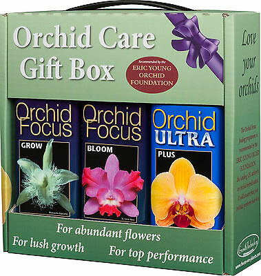 3 x 300ml Orchid Focus Plant Food - GROW BLOOM ULTRA - Gift Pack Nutrients