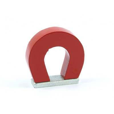 29 x 25 x8mm Traditional Alnico Horseshoe Magnet +keeper educational science toy