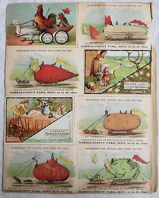 Victorian Trade Card Lot Insect Fair Rhode Island State 1890 Old Vtg Antique