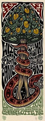 Allman Brothers / Widespread Panic  2009 Charlotte Poster Signed by Jeff Wood