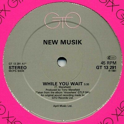 """12"""" Uk ** New Musik - While You Wait / From The Village**(Gto '81)**8013"""