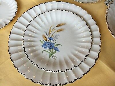 GORGEOUS American Limoges WHEATFIELD CoMPLete Set of China Dishes Tea Pot Gravy